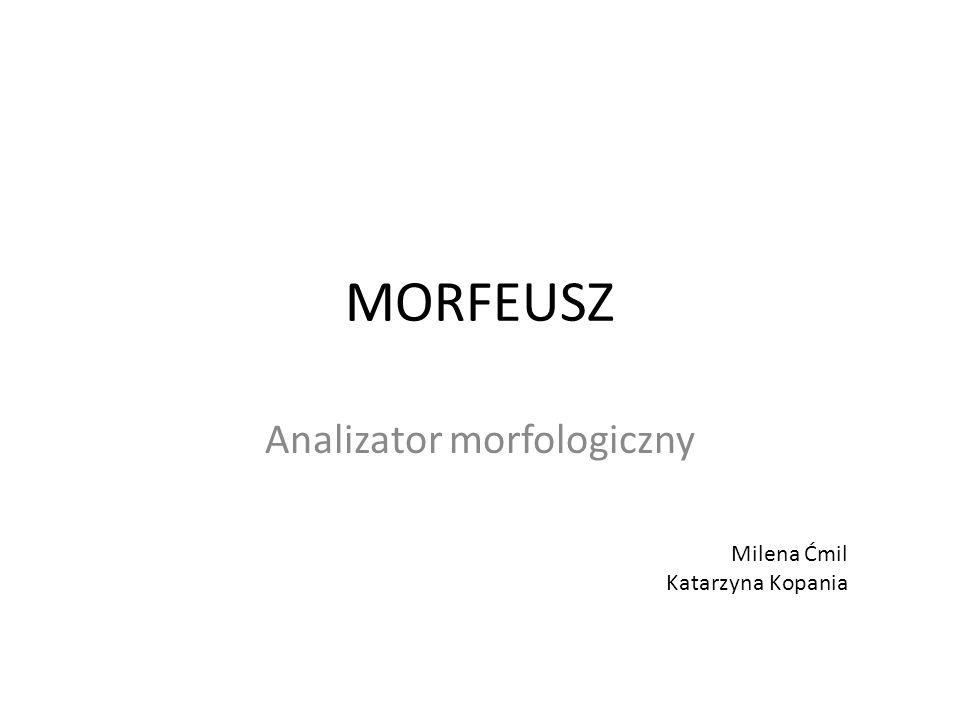 Analizator morfologiczny