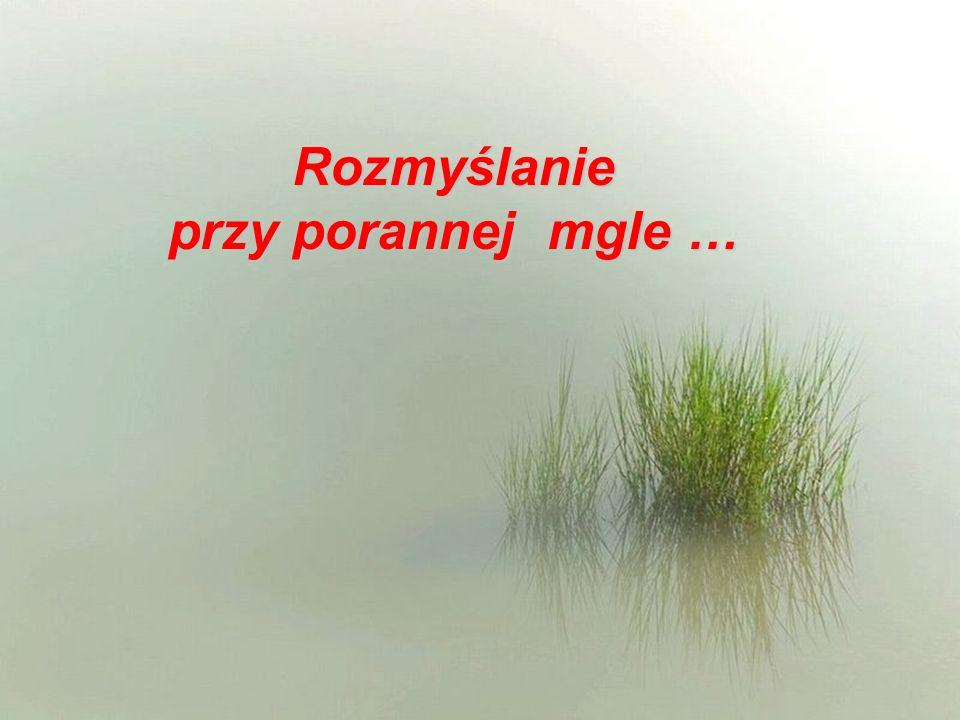 Rozmyślanie przy porannej mgle …