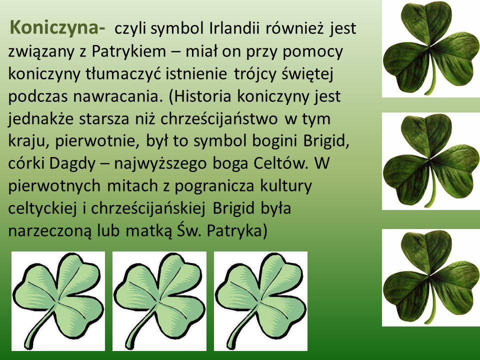 Koniczyna- czyli symbol Irlandii również jest związany z Patrykiem – miał on przy pomocy koniczyny tłumaczyć istnienie trójcy świętej podczas nawracania.