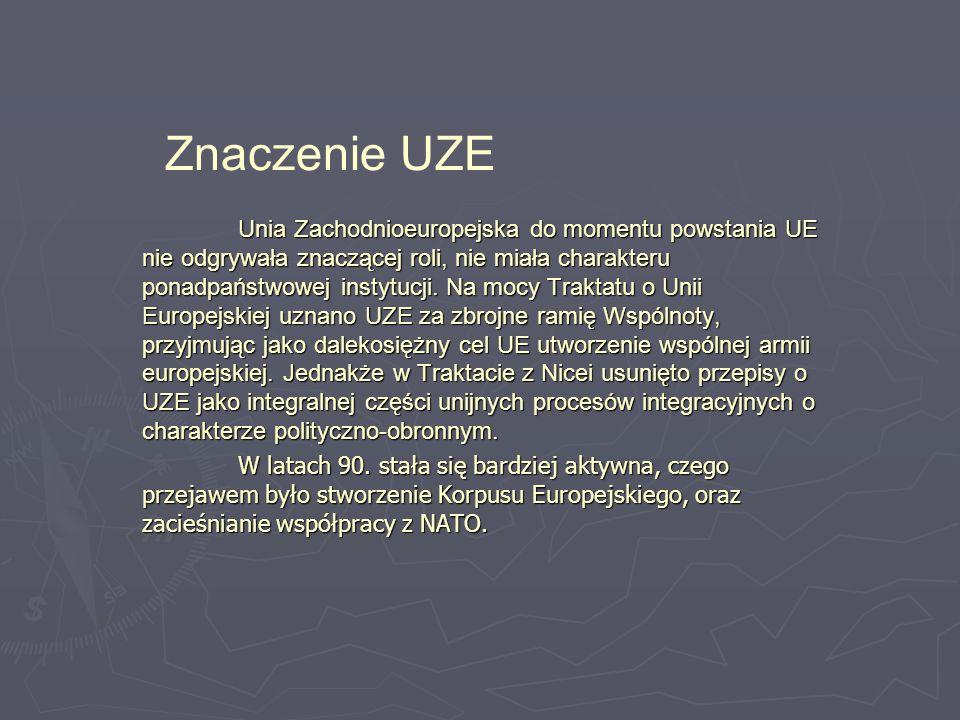 Znaczenie UZE