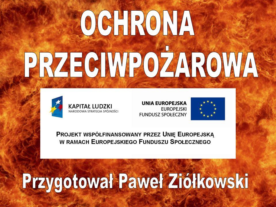 Przygotował Paweł Ziółkowski