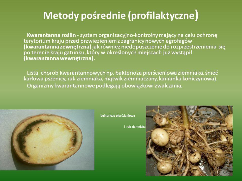 Metody pośrednie (profilaktyczne)