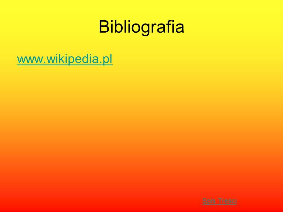 Bibliografia www.wikipedia.pl Spis Treści