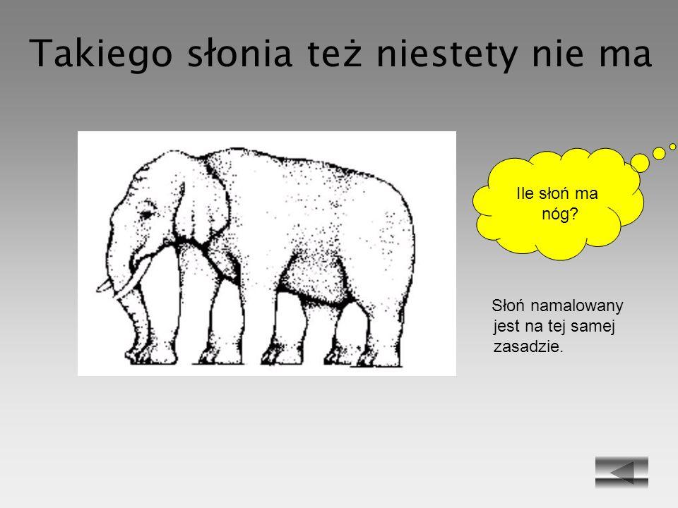 Takiego słonia też niestety nie ma