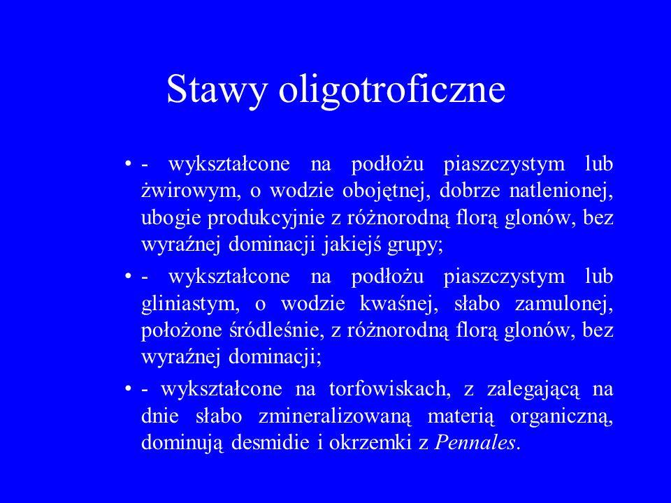 Stawy oligotroficzne