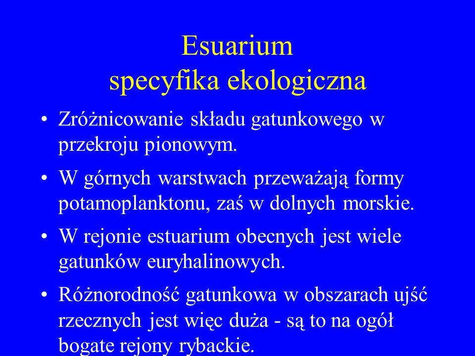Esuarium specyfika ekologiczna