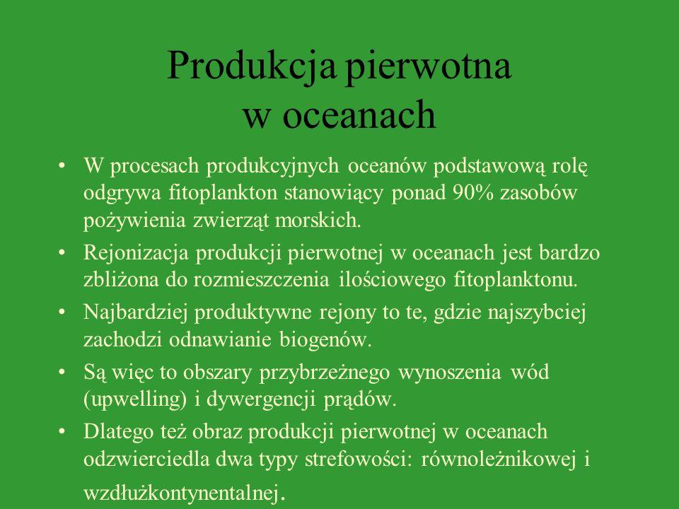 Produkcja pierwotna w oceanach