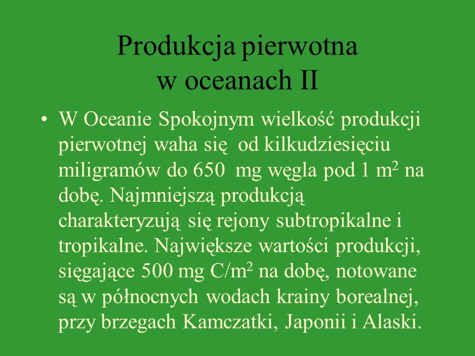 Produkcja pierwotna w oceanach II