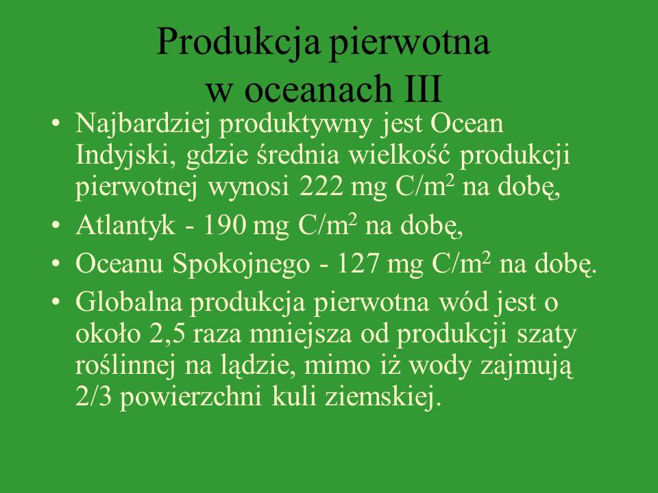 Produkcja pierwotna w oceanach III