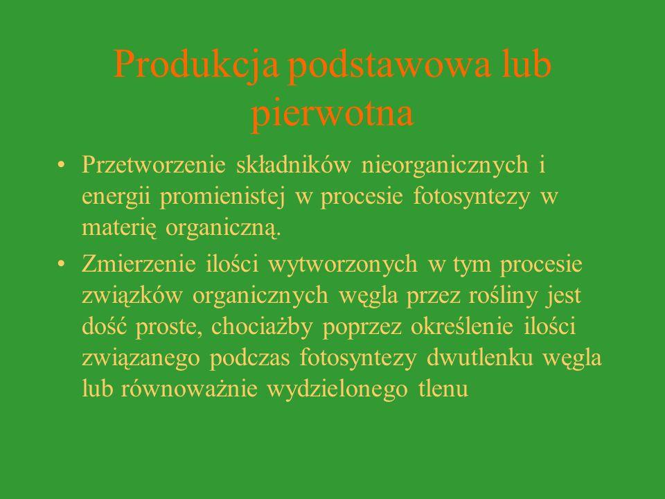 Produkcja podstawowa lub pierwotna