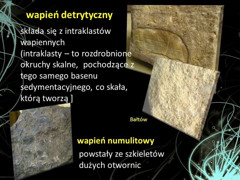 wapień detrytyczny składa się z intraklastów wapiennych