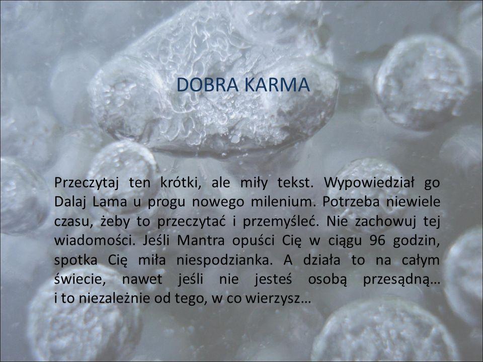 DOBRA KARMA