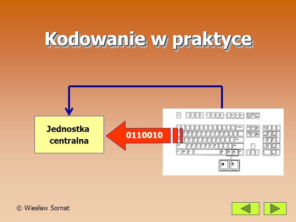 Kodowanie w praktyce Jednostka centralna 0110010 © Wiesław Sornat