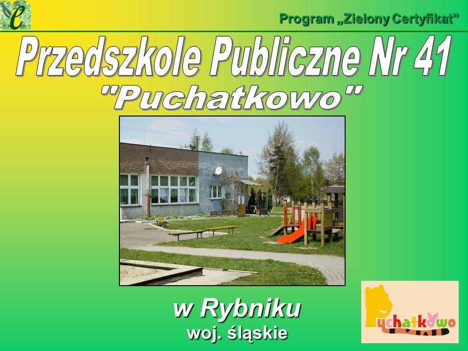 Przedszkole Publiczne Nr 41