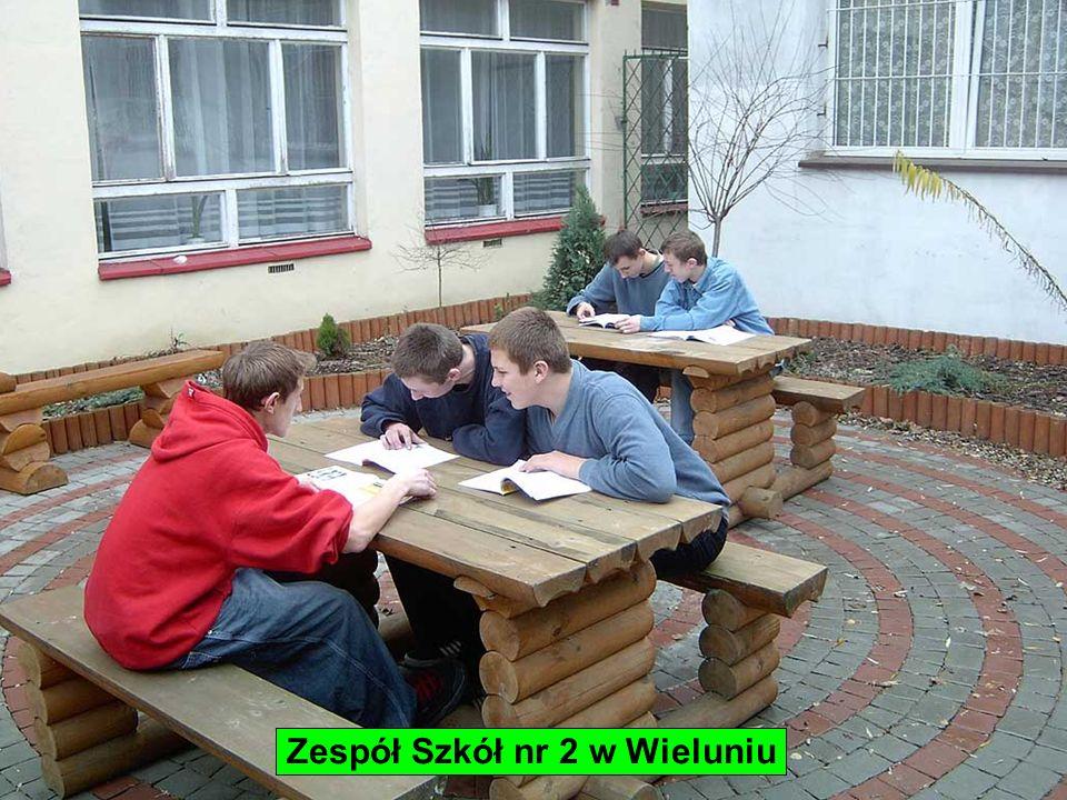 Zespół Szkół nr 2 w Wieluniu