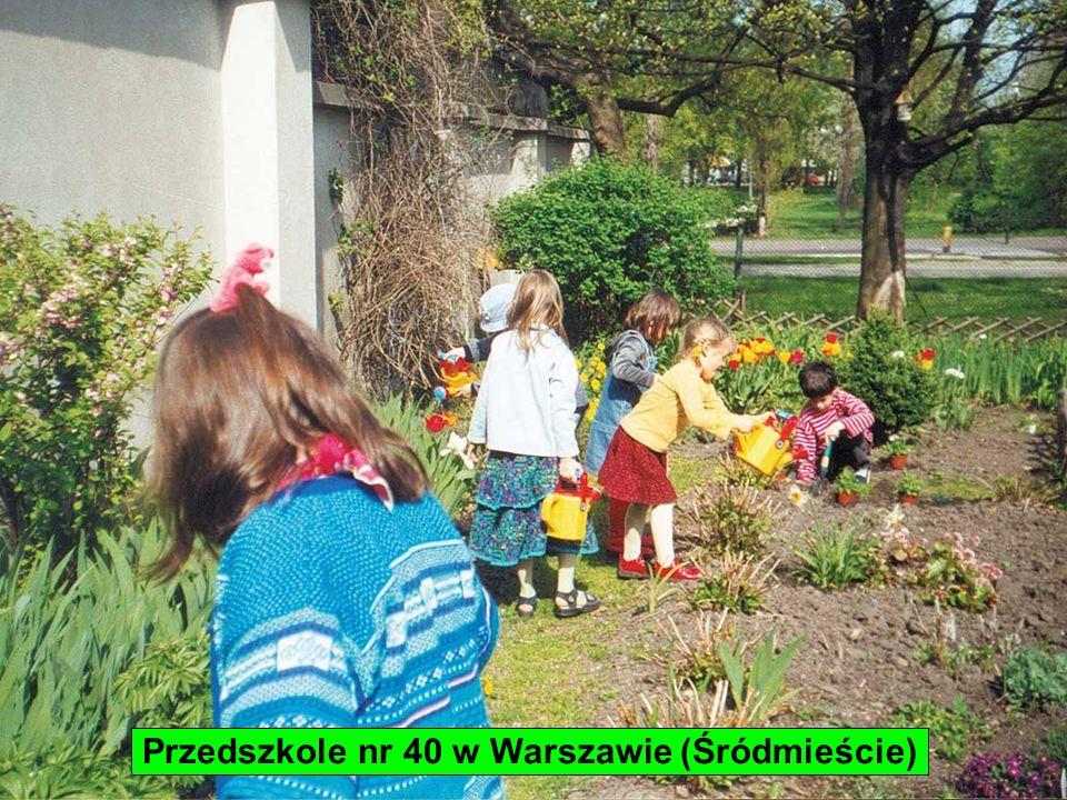 Przedszkole nr 40 w Warszawie (Śródmieście)