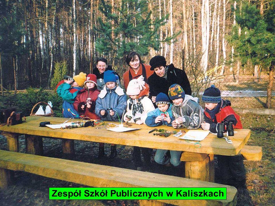Zespół Szkół Publicznych w Kaliszkach