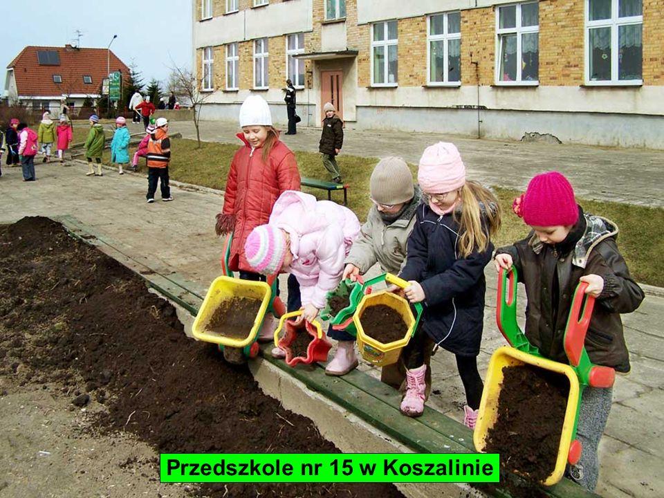 Przedszkole nr 15 w Koszalinie