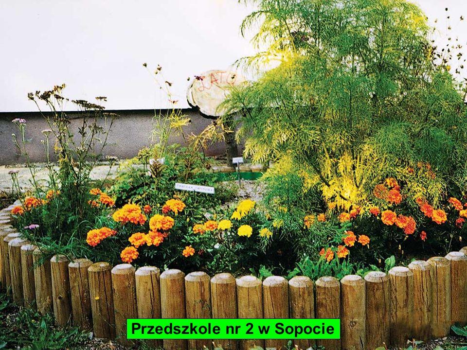 Przedszkole nr 2 w Sopocie