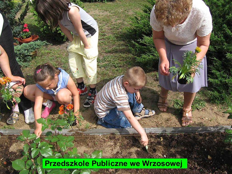 Przedszkole Publiczne we Wrzosowej