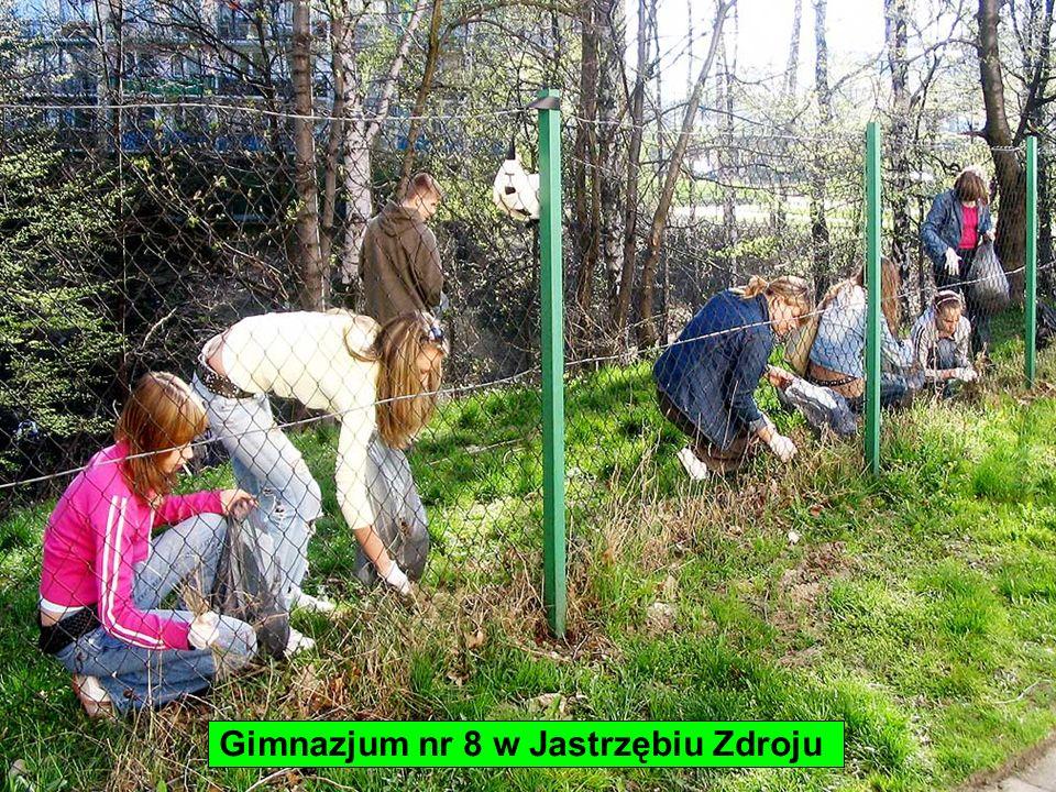 Gimnazjum nr 8 w Jastrzębiu Zdroju