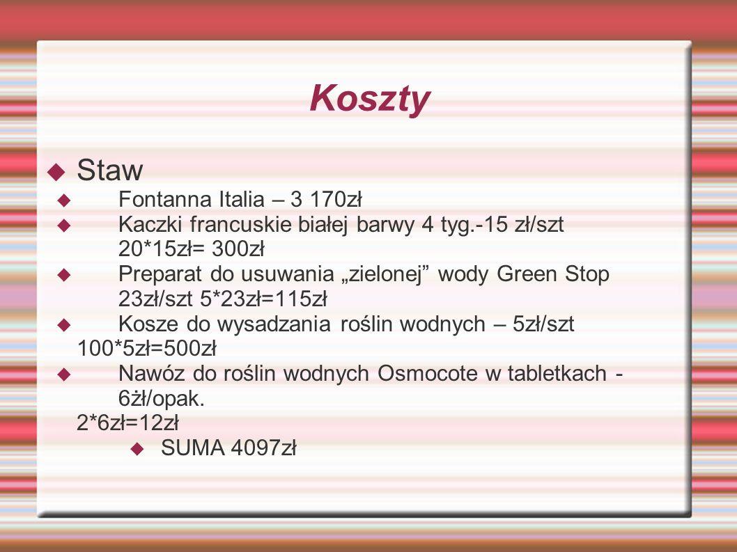 Koszty Staw Fontanna Italia – 3 170zł