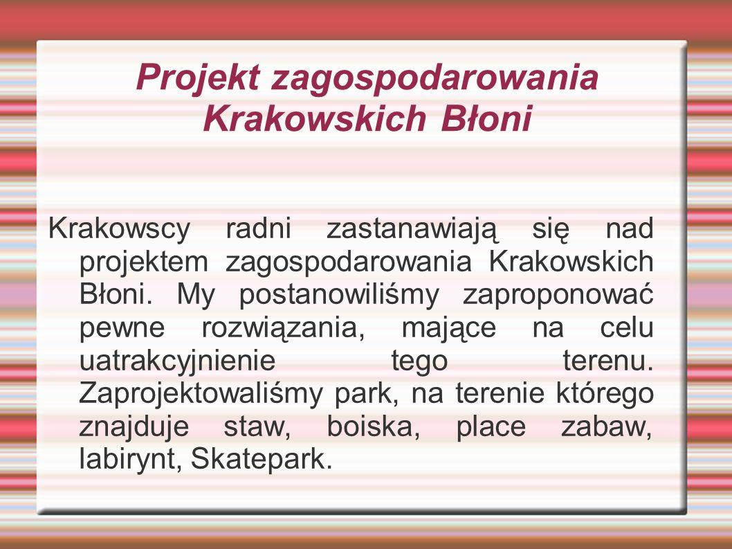 Projekt zagospodarowania Krakowskich Błoni