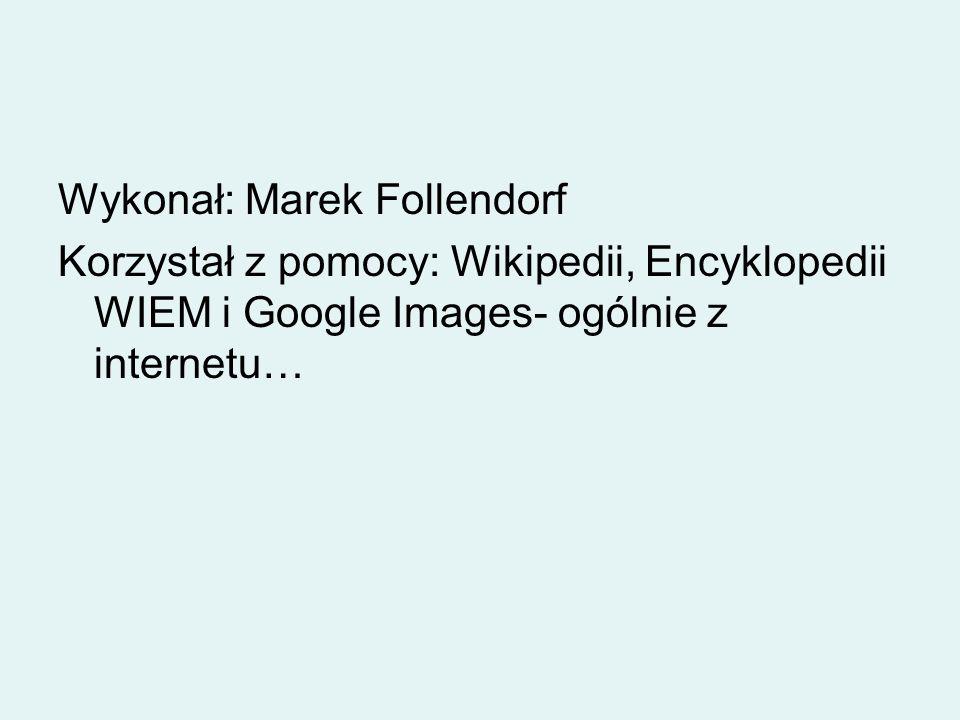 Wykonał: Marek Follendorf