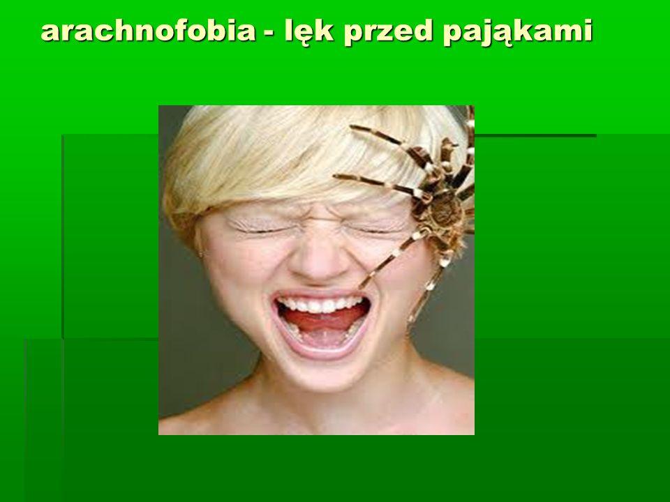 arachnofobia - lęk przed pająkami