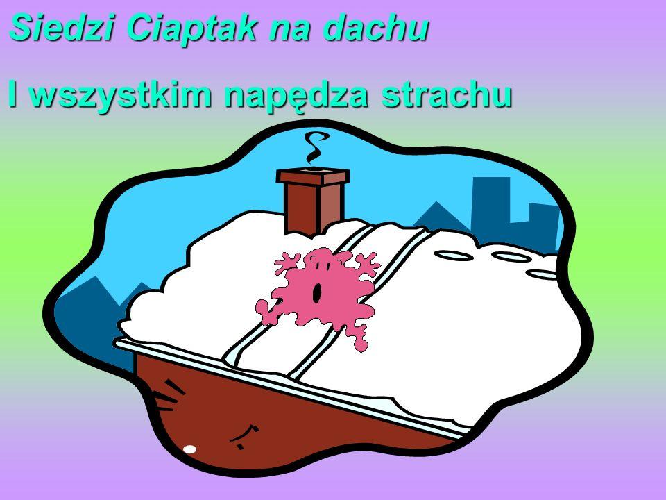 Siedzi Ciaptak na dachu