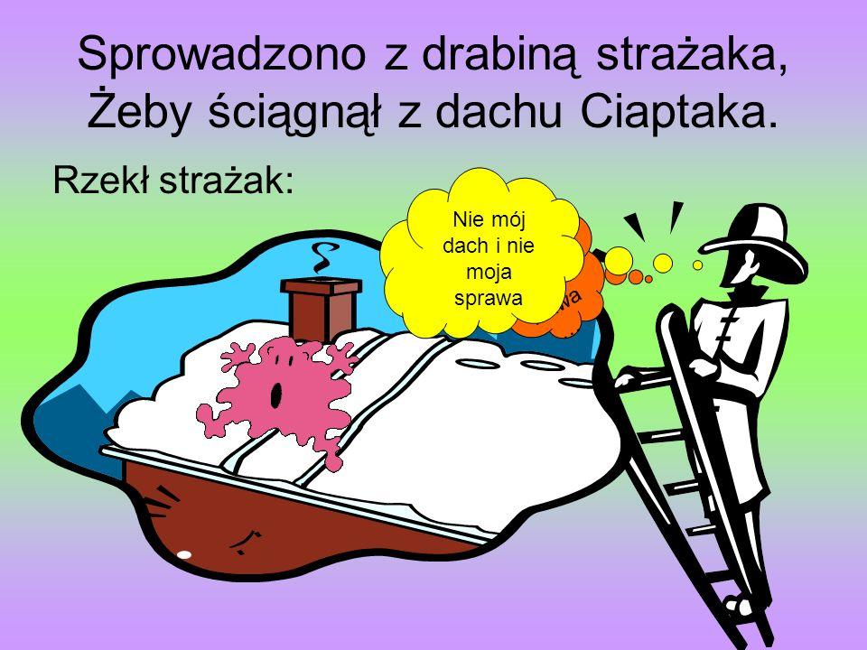 Sprowadzono z drabiną strażaka, Żeby ściągnął z dachu Ciaptaka.