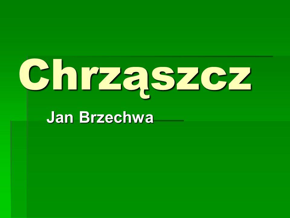 Chrząszcz Jan Brzechwa