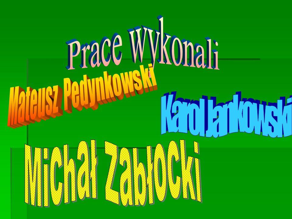 Prace wykonali Mateusz Pedynkowski Karol Jankowski Michał Zabłocki