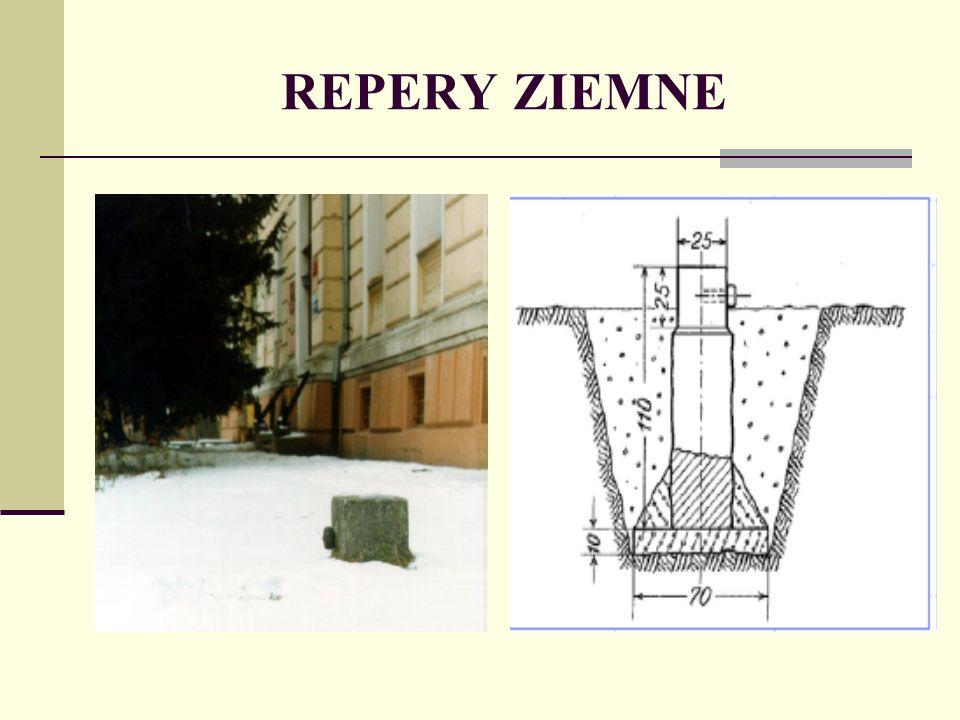 REPERY ZIEMNE