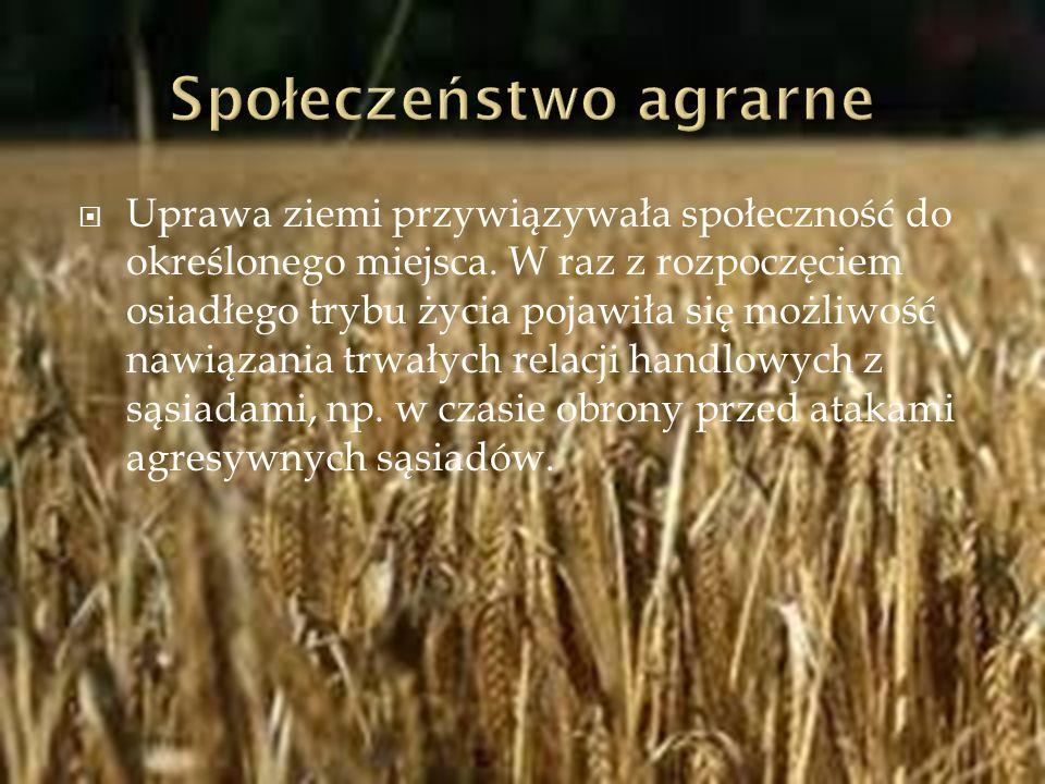 Społeczeństwo agrarne