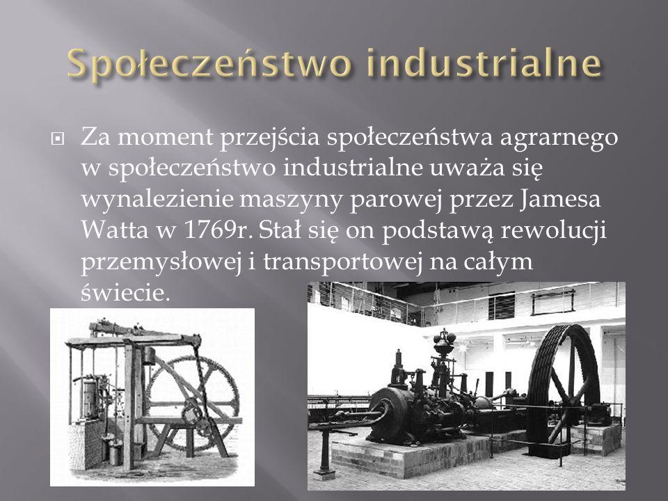 Społeczeństwo industrialne