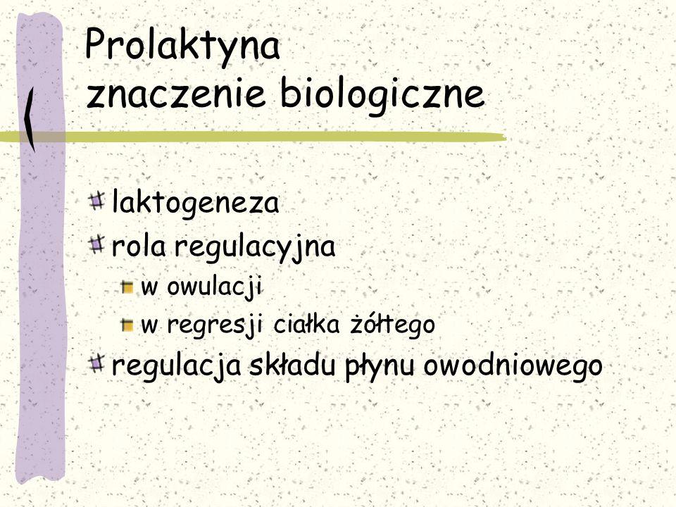 Prolaktyna znaczenie biologiczne