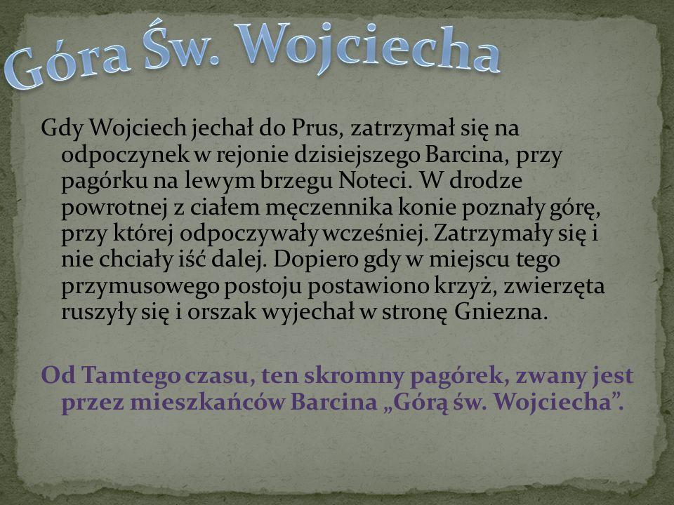 Góra Św. Wojciecha