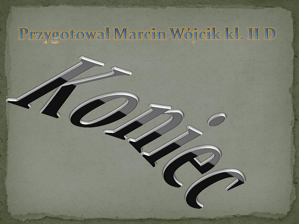 Przygotował Marcin Wójcik kl. II D