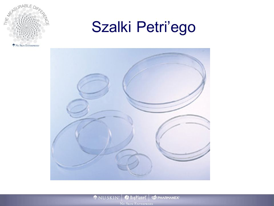 Szalki Petri'ego You will hear often that this business is about relationships….