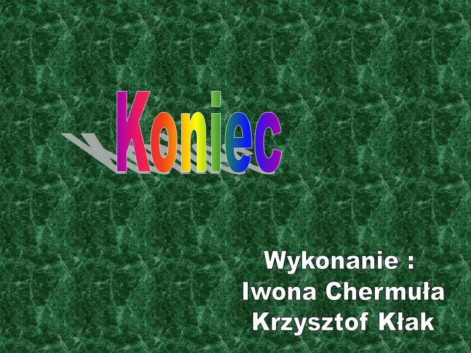 Koniec Wykonanie : Iwona Chermuła Krzysztof Kłak