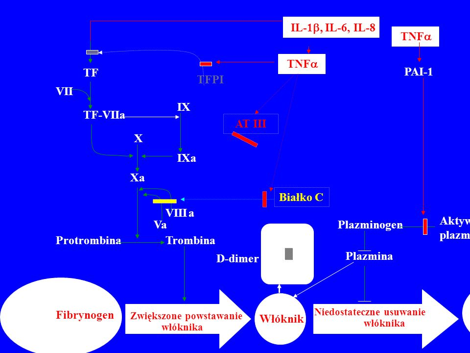 Aktywatory plazminogenu Plazminogen