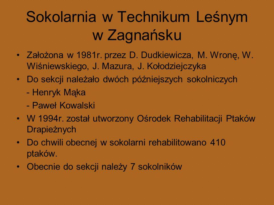 Sokolarnia w Technikum Leśnym w Zagnańsku