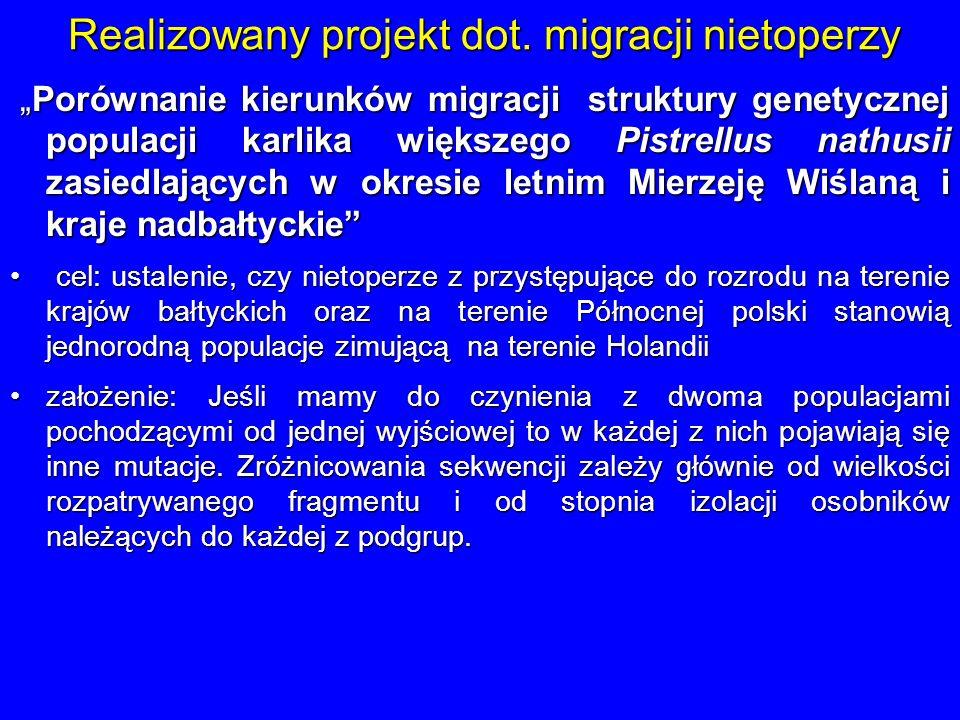 Realizowany projekt dot. migracji nietoperzy