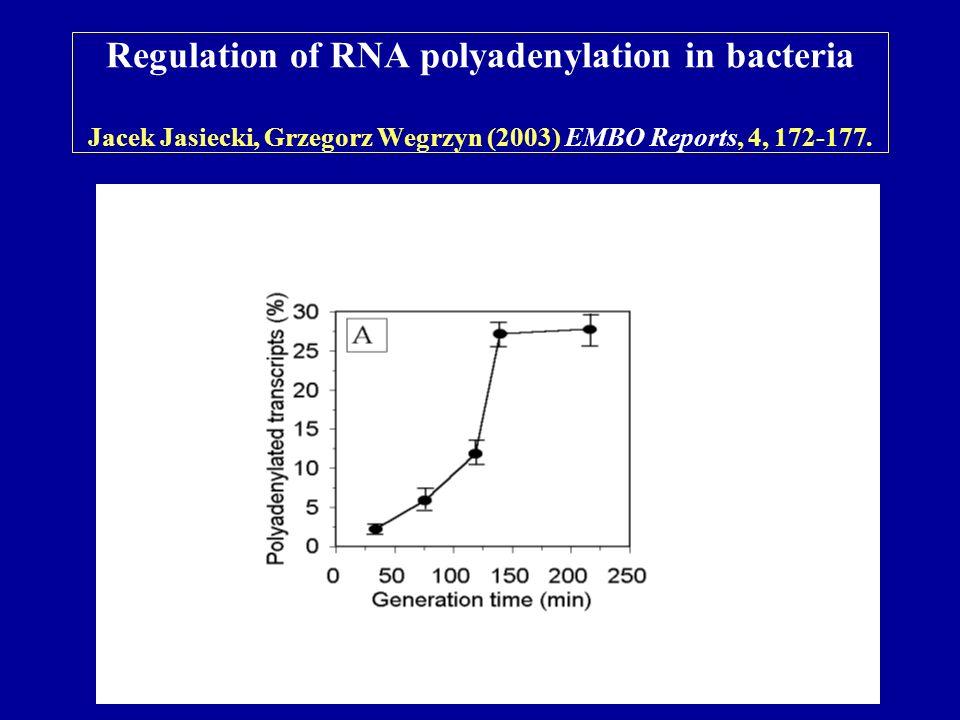 Regulation of RNA polyadenylation in bacteria Jacek Jasiecki, Grzegorz Wegrzyn (2003) EMBO Reports, 4, 172-177.