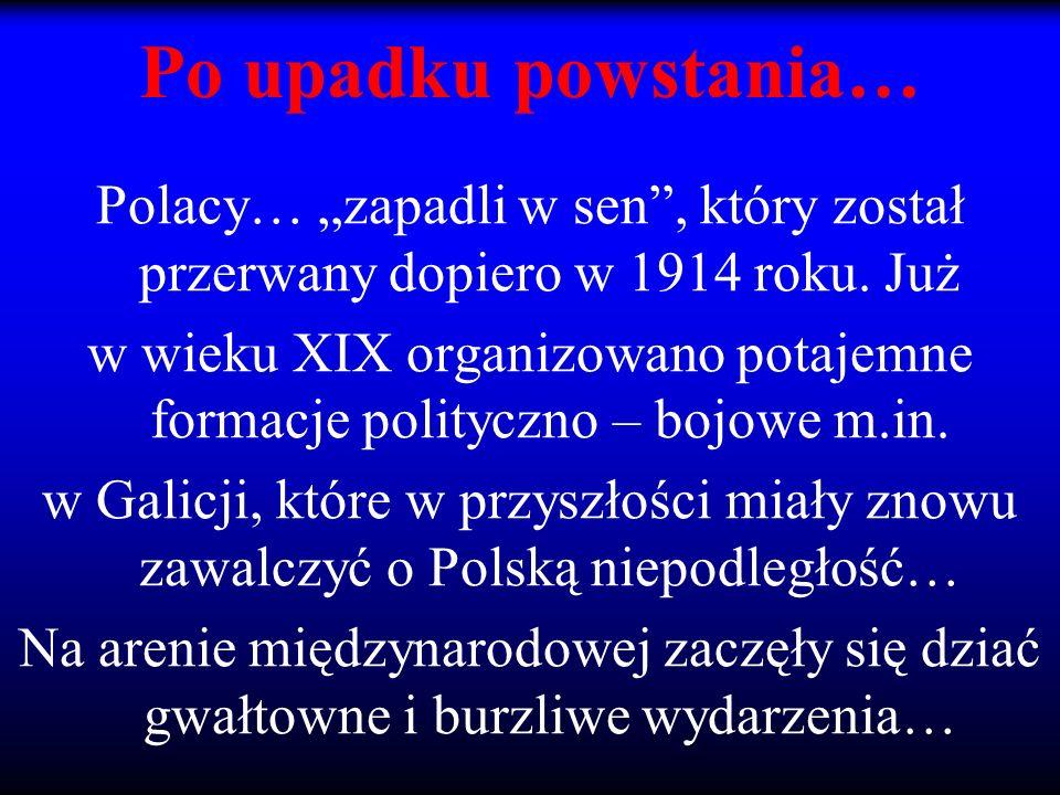 w wieku XIX organizowano potajemne formacje polityczno – bojowe m.in.