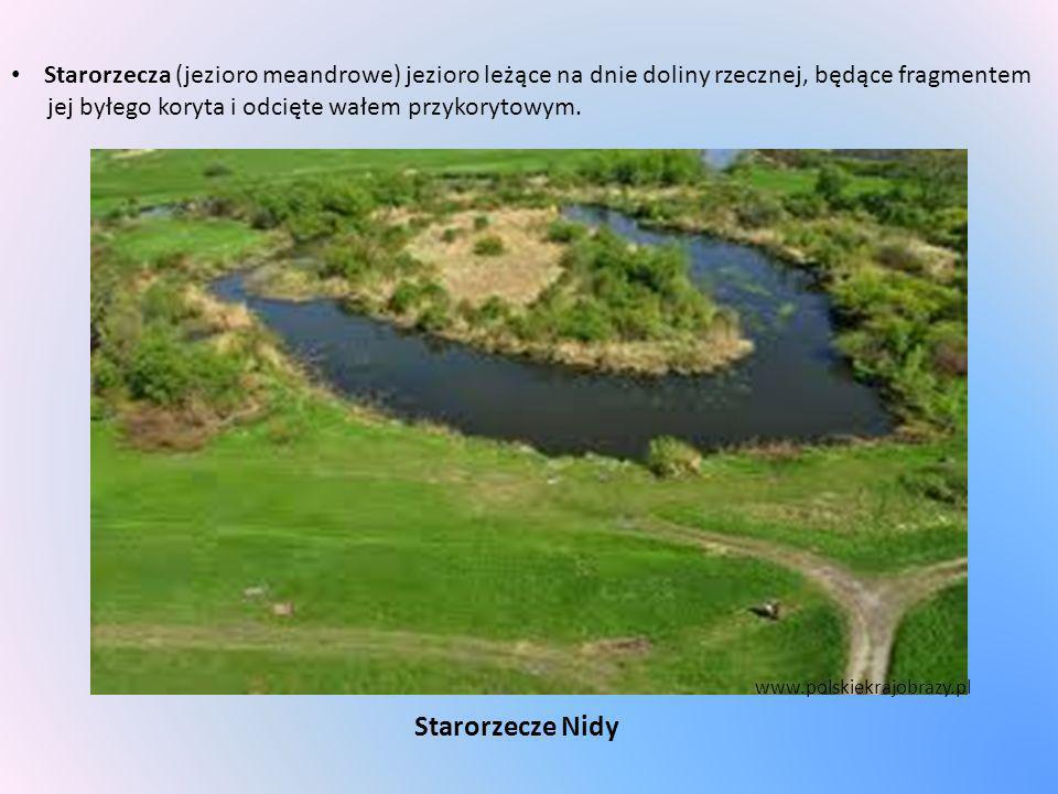 Starorzecza (jezioro meandrowe) jezioro leżące na dnie doliny rzecznej, będące fragmentem jej byłego koryta i odcięte wałem przykorytowym.
