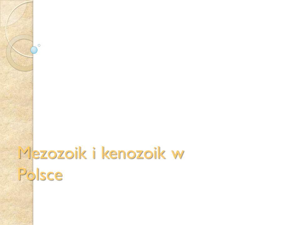 Mezozoik i kenozoik w Polsce