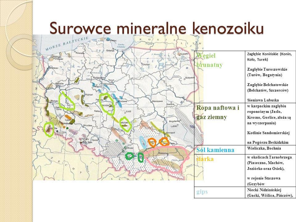 Surowce mineralne kenozoiku