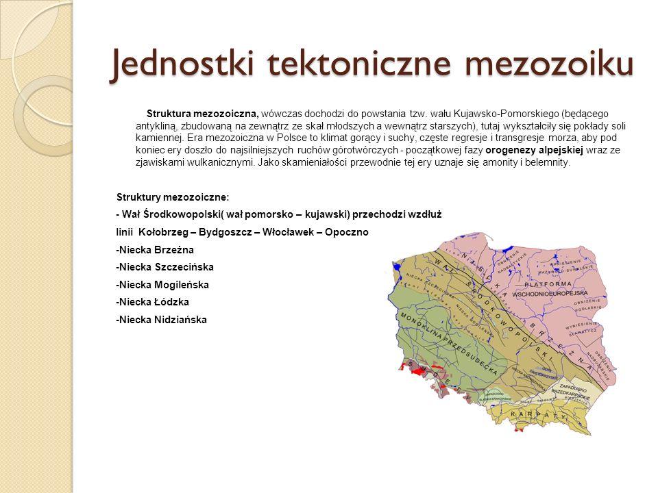 Jednostki tektoniczne mezozoiku